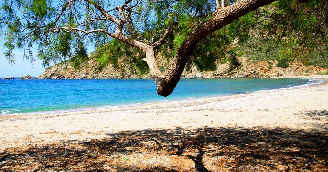 CTN Andros – Σύμπραξη 31 τουριστικών επιχειρήσεων